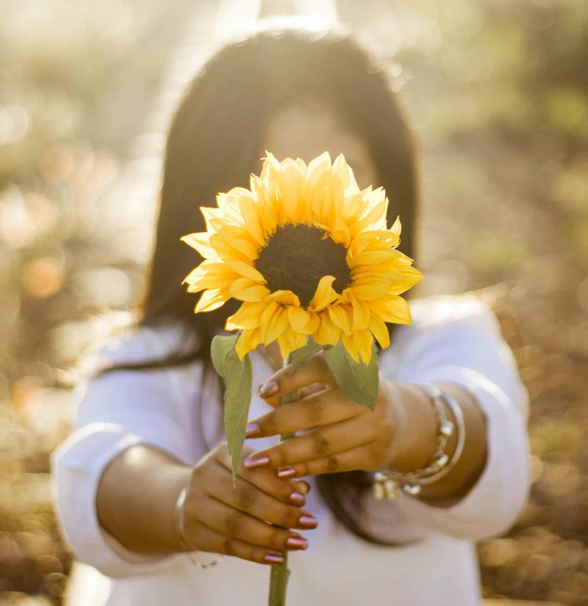 woman offering a sunflower