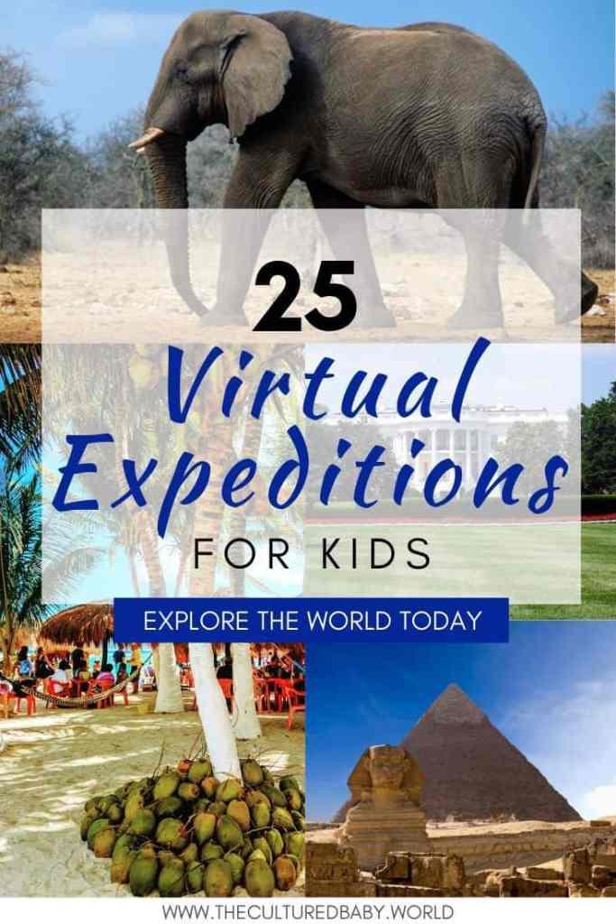 virtual field trip to zoo, virtual field trip to beach, virtual field trip to white house, virtual field trip to the pyramids